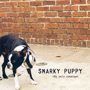 SnarkyPuppy-theonlyconstant